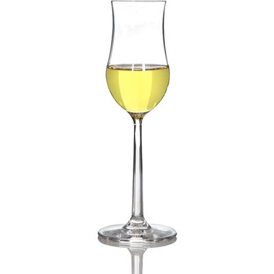Sontell cognacglas - 6 st