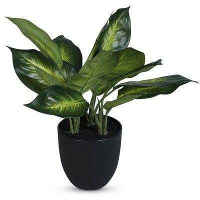 Konstväxt - Prickblad H35 cm