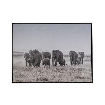 Tavla Elefanter - 80x60 cm